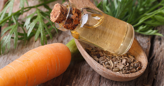 HEALTH PROPERTIES OF CARROT OIL